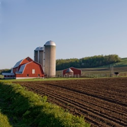 Red-barn-and-silos-with-milled-field